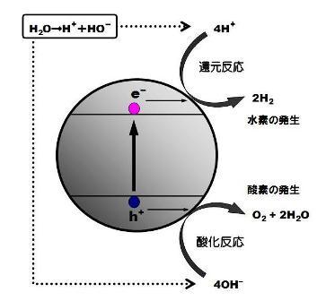 人工光合成-3
