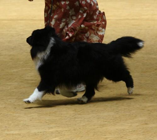20080601-3.jpg