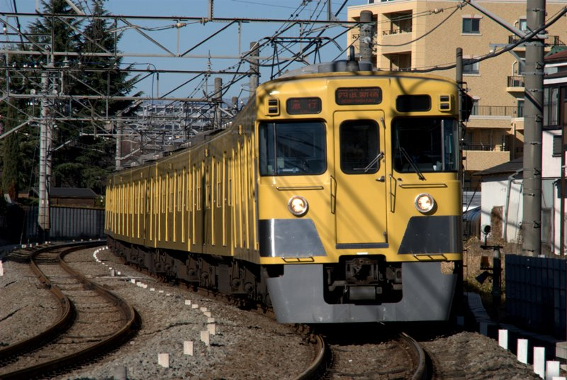 DSC_4691.jpg