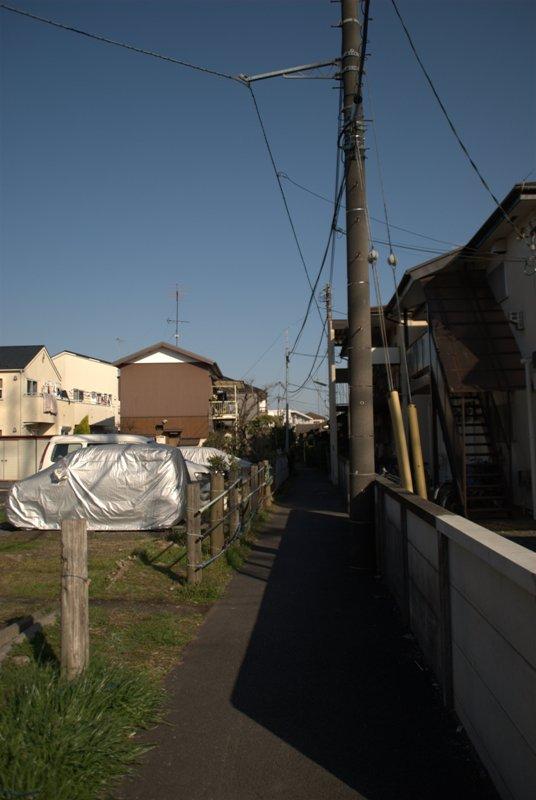 DSC_5203.jpg