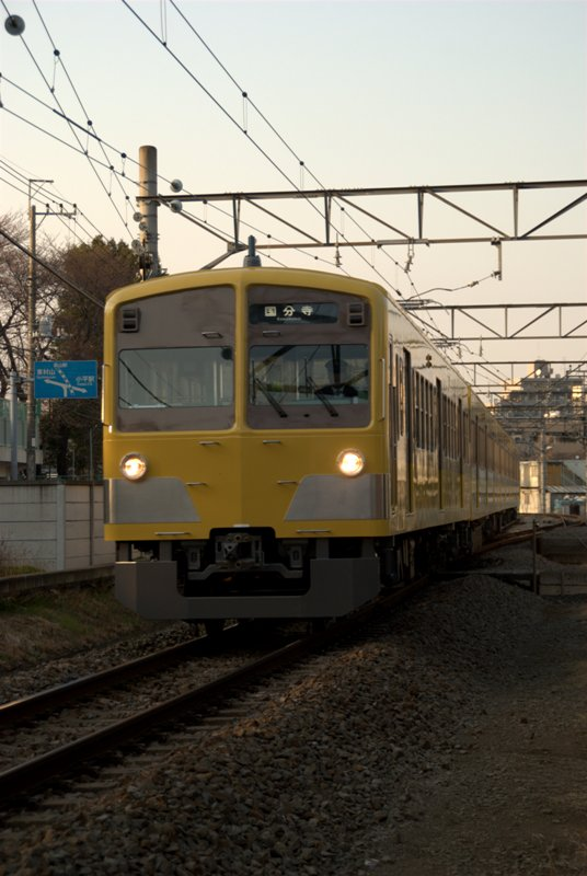 DSC_5261.jpg