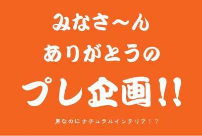1365_convert_20110706231245.jpg