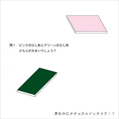 錯覚1convert_20110609183047