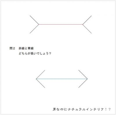 目の錯覚3convert_20110612034319