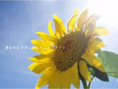 36_convert_20110725155315.jpg