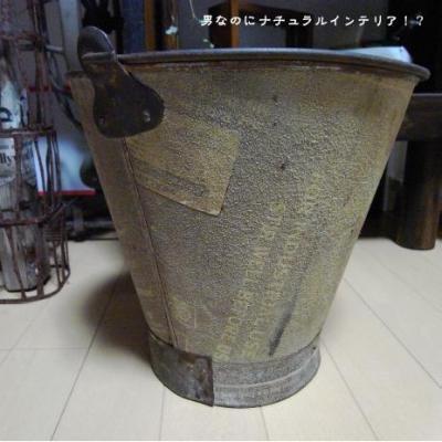 822_convert_20110202195832.jpg
