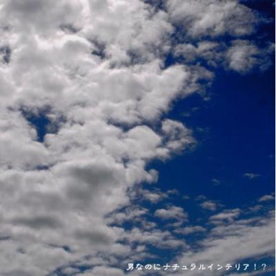 858_convert_20110215003504.jpg