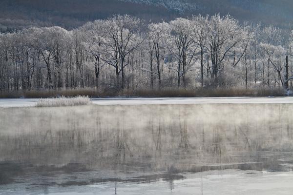 気荒らしと樹氷  1月5日撮影