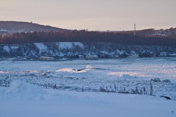 流氷は網走の一部の海岸に接岸しました