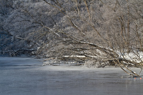 朝の網走川