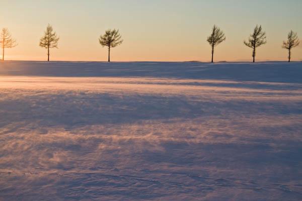 寒風 メルヘンの丘