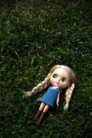 blythe,blue flowers,grass