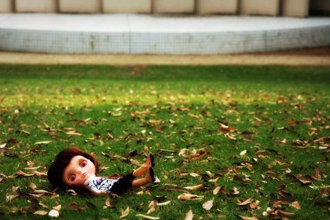 blythe,green,autumn,fall,grass