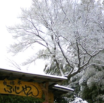 また、雪です、~看板。