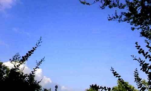 09.夏~空。