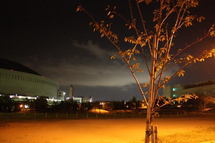 夜のドーム周辺