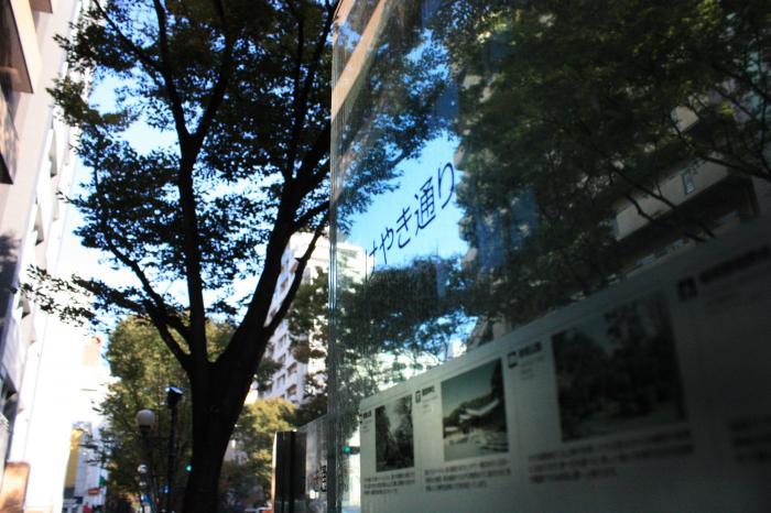 国道202号線 けやき通り(福岡市)