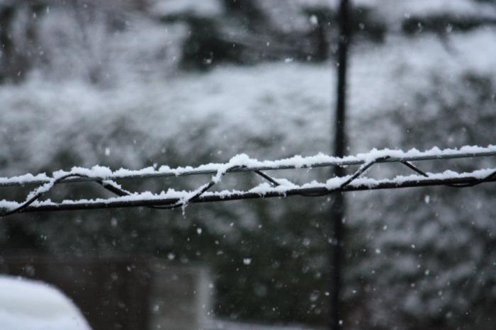 福岡の大雪