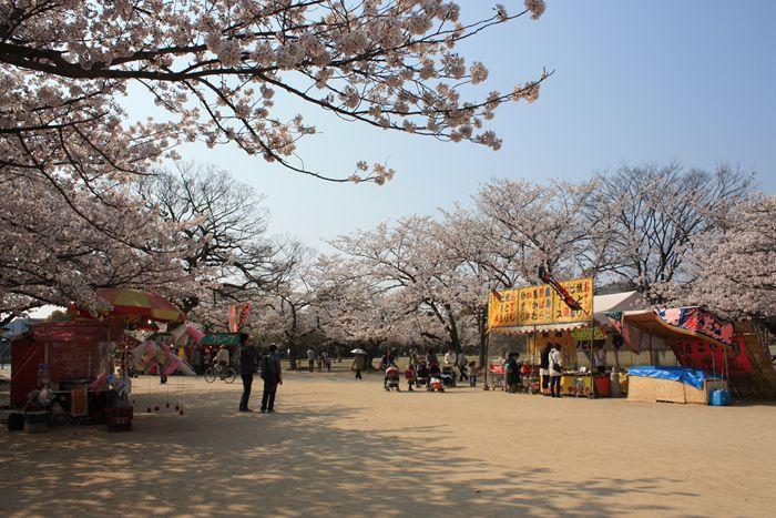 舞鶴公園 西広場
