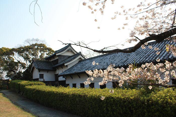 桜満開!重要文化財・多聞櫓(福岡城址)