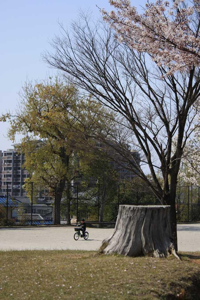 干隈中央公園