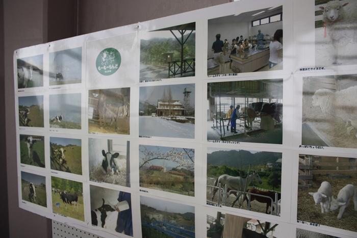 油山市民の森の中央展望台