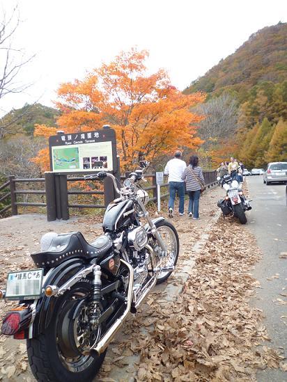 2011_1017戸田別館 0015
