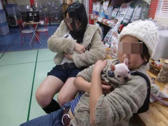 竭。蟋牙ヲケ_convert_20110212100640
