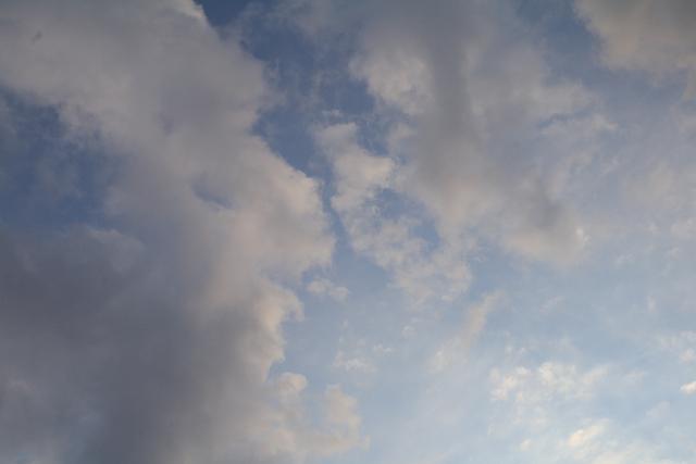20110124 夕方前1