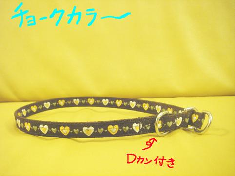 cyoku_20080802001216.jpg