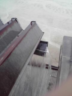 大雨の日20080905