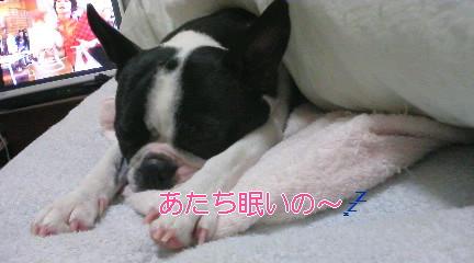 Gabu080323.jpg