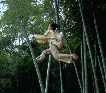 竹林を翔け上がる