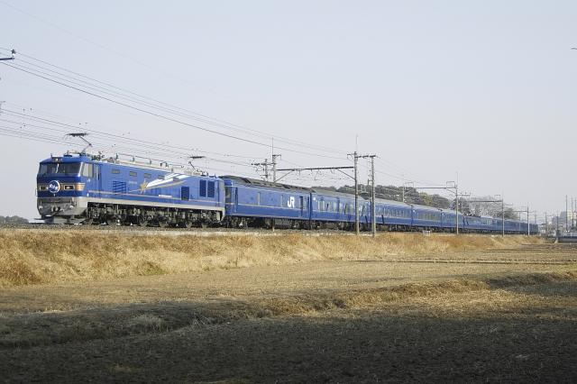 110205-2.jpg