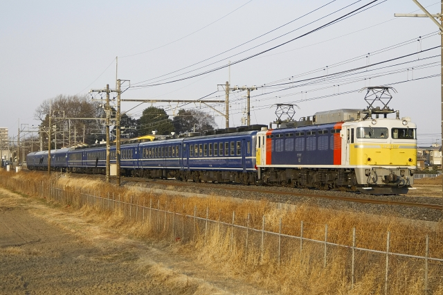 110207-9502.jpg