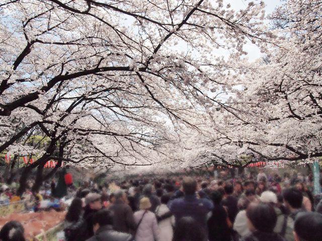 上野公園15