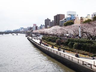 東京スカイツリー69