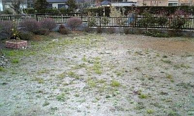 北の庭12-31