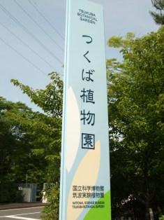 20090526-1.jpg