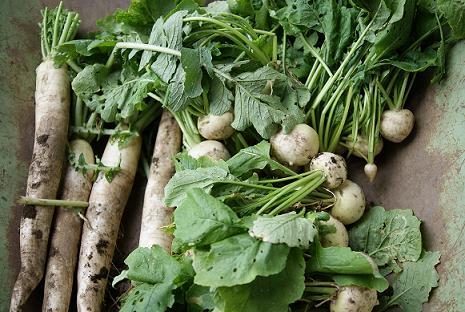 泥つき野菜