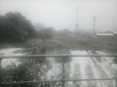鬼太郎列車 (2)