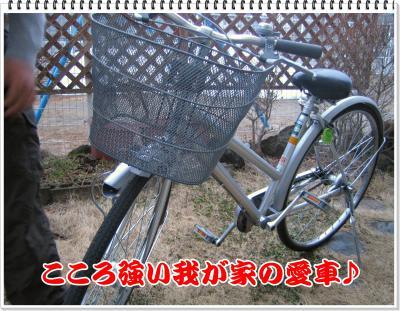 この自転車のライト。地震があった日は余震のたびに振動でついてました・・・。