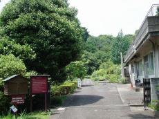 東京薬科大学 (16)