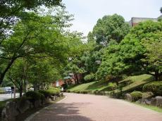 東京薬科大学 (19)