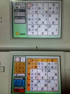 D1010044_20080723235214.jpg