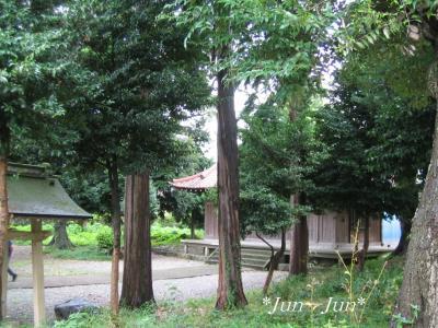 佐野原神社