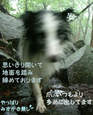 Aug16_5