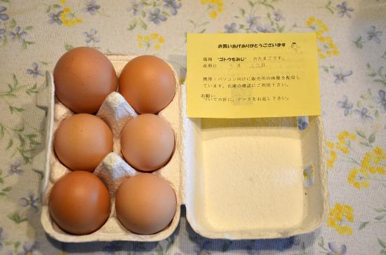 卵かけごはんの旨いこと美味いこと