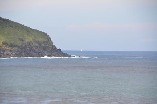 筆島沖に現れる