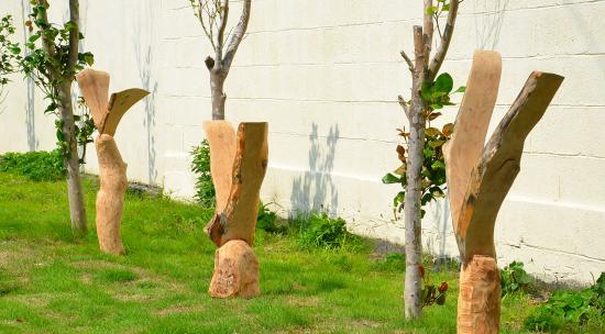 坂牛幹雄 木の芽